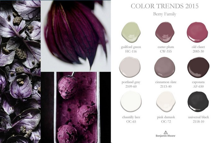 http://eclectictrends.com/my-color-trend-presentation-201516-for-global-color-research-dusky-berry-part-i/?utm_source=buffer